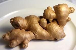 ginger / halia