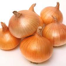 yellow onion / bawang besar kuning