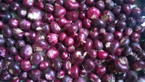 rose onion / bawang rose