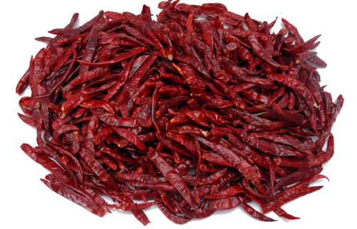 dried chilly / cili kering